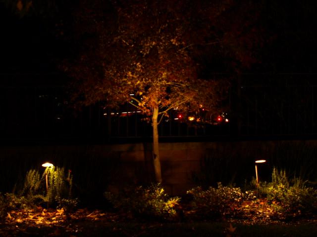 camarillo outdoor lighting landscape