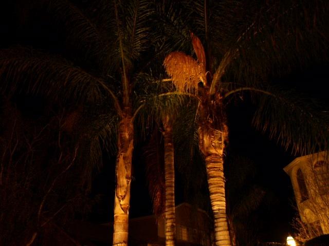 camarillo outdoor lighting